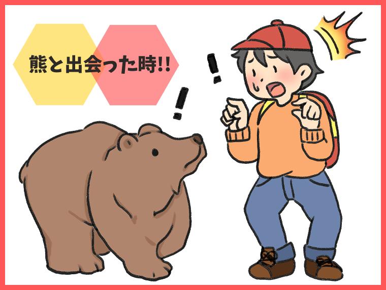 熊と出会ってしまった時の対応