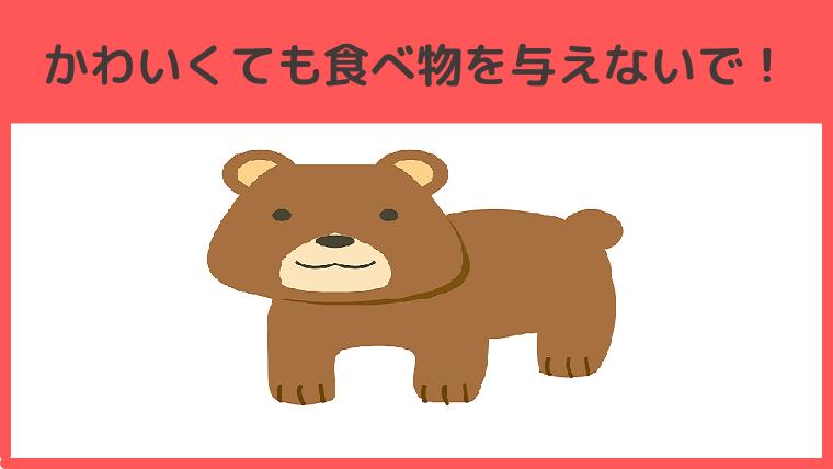 野生の熊に餌を与えてはいけません